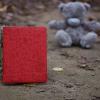 Кожаный чехол-книжка TTX (360 градусов) (Baby Love) для Apple iPad Air 2