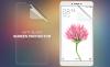 Защитная пленка Nillkin для Xiaomi Mi Max