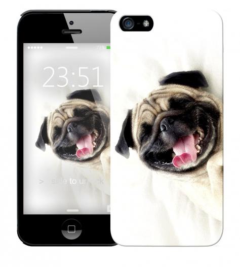 Чехол «Fun dog» для Apple iPhone 5/5s