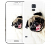 Чехол «Fun dog» для Samsung Galaxy S5