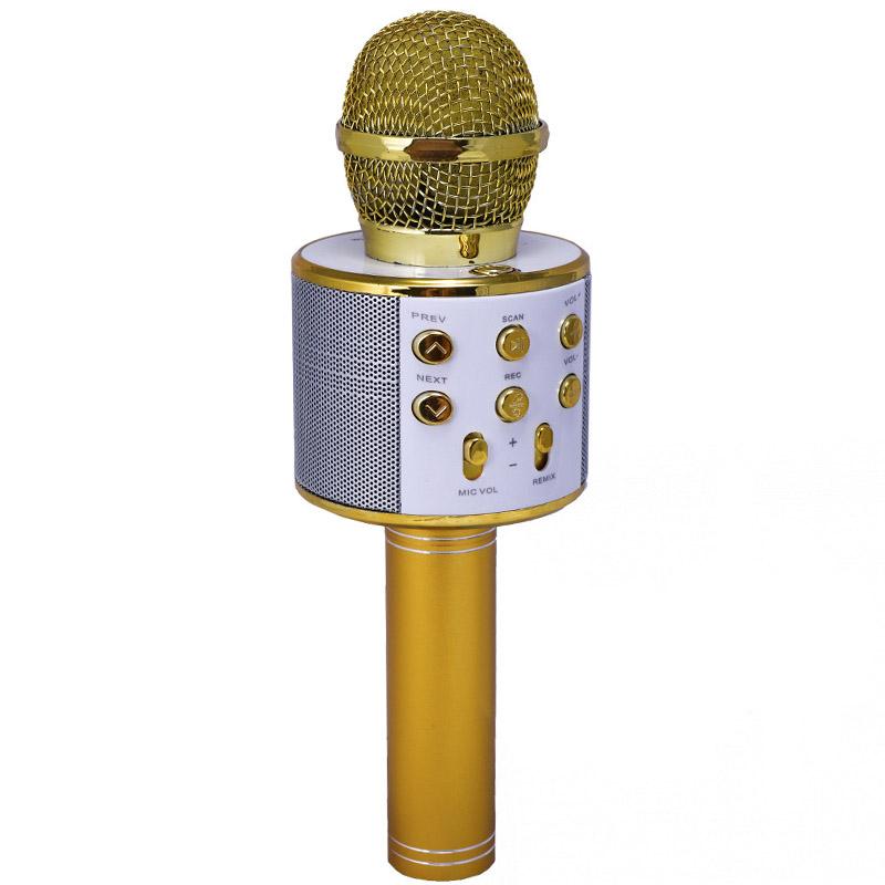 Караоке Микрофон-колонка WS-858